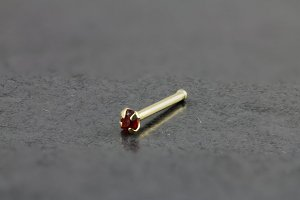 14kt Yellow Gold 2mm Ruby Nose Bone