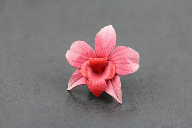 Image of Pink Magnolia Leather Flower Plugs body piercing jewellery NZ