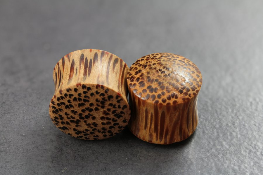 Image of Coconut Wood Flared Plugs