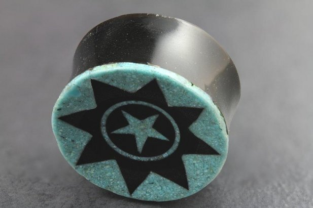 Image of Carved Horn and Crushed Turquoise Plugs body piercing jewellery NZ