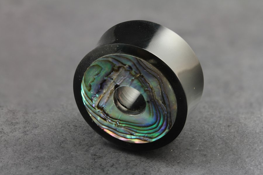 Image of Abalone and Horn Organic Flared Plugs