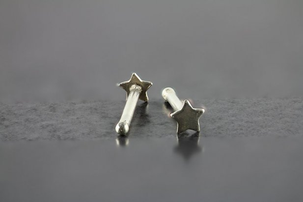 Sterling Silver Nose Bone