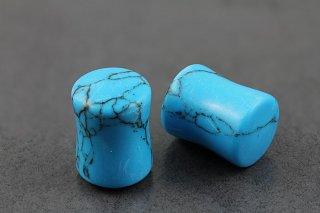 Turquoise Flared Plugs