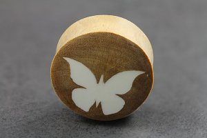 White Butterfly on Clove Wood